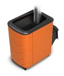 Печь для бани ТМФ Тунгуска 2011 Carbon дверца антрацит терракота - фото 5359